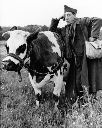 Affiche la vache et le prisonnier fernandel dimension 24x30 cm