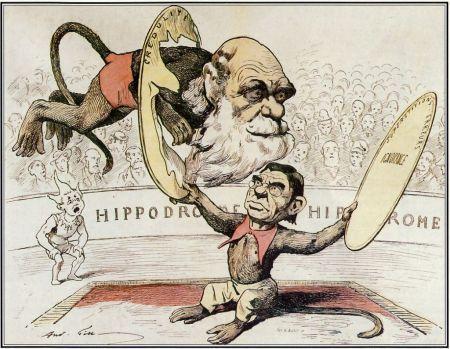 Caricature darwin littre