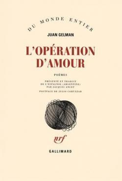 Operation damour