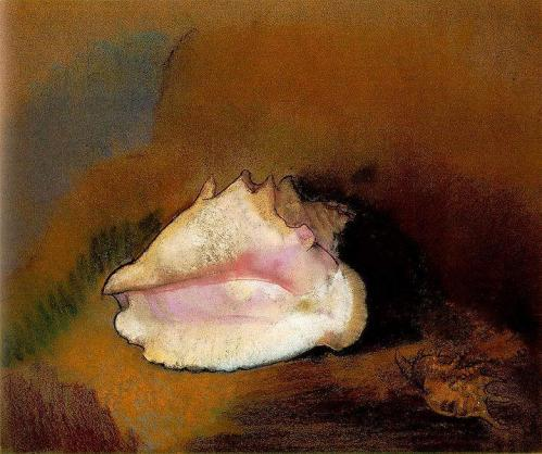 Redon coquille